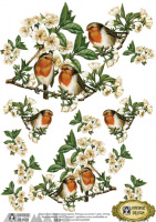 Decals Decoupage Paper A4 '' Birds on the branch''
