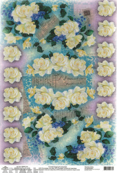 Assorted White Roses