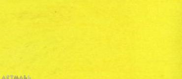 17 Bright Yellow