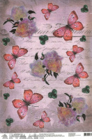 Butterflies & Piones on Handwriting Background