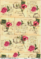 Roses & Letters