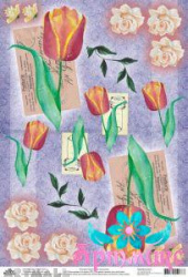 Tulips and roses on purple background
